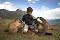 CATERS MARMOT BOY 11