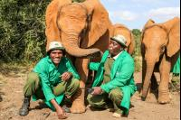 CATERS RESCUED ELEPHAN